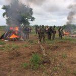 Boko Haram: Insurgents suffer heavy casualty in Borno