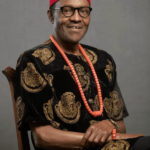 What Buhari told Igbo monarch at Presidential Villa