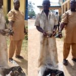 I asked my client to bring human head and wrists to scare him – Herbalist