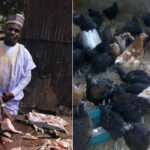 Meet Ali Shuaibu Baba, a First Class Computer Science graduate who slaughters chickens for a living while awaiting his NYSC