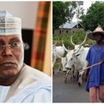 Herders Crisis: Grazing laws in Benue, Taraba, Ekiti to be reviewed — Atiku