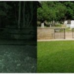 Confusion arise as ghost of recently buried man was seen leaving Ikoyi cemetery in Lagos to rectify the wrongs done to his family