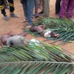 Scores Killed As Suspected Herdsmen Attack Community Again In Kaduna (Graphic Photos)