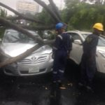 PHOTOS: Flooding, fallen trees and electric poles trail early morning rainfall in Lagos