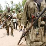 Katsina: Bandits eliminate vigilante members in forest battle