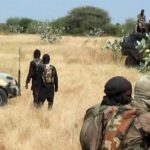 33 Boko Haram fighters, 37 aid workers killed