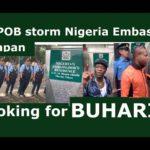 IPOB Members Demand The Arrest Of President Buhari In Japan (Video & Photos)