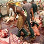 Lagos Govt. makes important announcement on meat hygiene