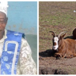 Court Remands Pastor For Allegedly Stealing Turkeys, Goat In Osun