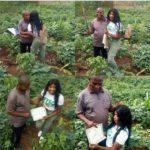 Graduate Goes To The Farm To Show Her Father Her NYSC Discharged Certificate
