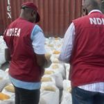 NDLEA Intercepts 181.2 Tonnes Of Cannabis In Ondo