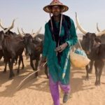 Herdsmen protest against anti-grazing law, sue Oyo govt