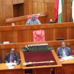 Senate Seeks Military Base In Sambisa Borders