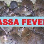 Lassa Fever Kills One In Kaduna, Doctors Confirm New Case