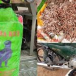 4653 Rounds Of Bullets Disguised As Rice, Intercepted In Zamfara