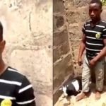 Update: 22-Year-Old Man Arraigned In Court After Death Of Goat He Raped