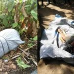 GRAPHIC PHOTOS: Lady Killed, Body Stacked In A Bag And Dumped On Road By Suspected Ritualists In Abia