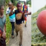 Man Kills His Cousin Over Mangoes In Abia (SEE PHOTOS)