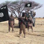 Boko Haram kills 20 in northeast Nigeria attack