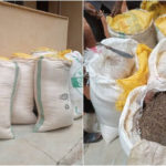 NDLEA Operatives Intercept Cannabis Hidden In Sacks Of Gaari (PHOTOS)