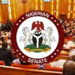 Breaking News: Senate Passes N10.805tr Revised 2020 Budget
