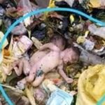 How abandoned twins were found dead in Calabar wastebin [PHOTOS]