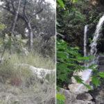 PHOTOS: Thunder Strikes Kill Fulani Herders' 15 Cows Near Ikogosi Warm Spring In Ekiti