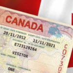 Immigration: Canada Gives Update for Nigerians Seeking Live in the Country As Refugees