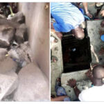 Residents Narrate How Kidnappers Den Was Discovered In Lagos, Police Begin Investigation (photos)