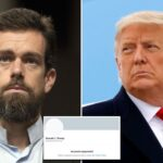 After Trump Ban, Twitter CEO Sends Cool Advice To Users