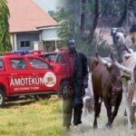 Three Amotekun Operatives Detained For Arresting Fulani Herdsmen In Oyo