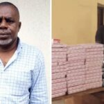 NDLEA Nabs Notorious Drug Baron In Lagos, Another Drug Dealer In Adamawa