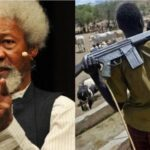 'Police Lied, Fulani Herdsmen, Cows Attacked My Property' – Wole Soyinka Breaks Silence