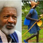 Police Speak On Alleged Fulani Herdsmen Attack On Soyinka