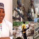 Miyetti Allah: Herdsmen Carrying Guns On Social Media Are Photoshopped