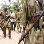 Hunters, Vigilante Kill Kidnapper, Rescue 7 Abducted Travellers In Ondo
