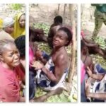 Parents of kidnapped Forestry College students urge El-Rufai negotiate with bandits