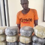 PHOTOS: NDLEA Nabs Wanted Nasarawa Drug Baron, Intercepts 1330kg Cannabis In Edo