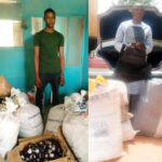 NDLEA Officials Nab Trans-Border Trafficker With 280kg Assorted Drugs In Kebbi