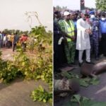 PHOTOS: Protest In Benue Over Brutal Killing Of 10 IDPs By Suspected Fulani Herdsmen