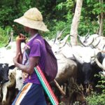 Fulani Terrorists Renovate, Live In Houses Of 55 Plateau Communities They Displaced – Federal Lawmaker