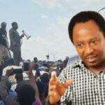 Shehu Sani Mocks Yoruba Nation Agitators After Rain 'Disperses' Osogbo Rally