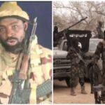 Boko Haram vs ISWAP: Shekau Bombed Himself, Dead – Nigeria Intelligence Service