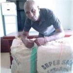 Police Arrest Notorious Drug Dealer In Adamawa, Recover Large Quantity Of Indian Hemp